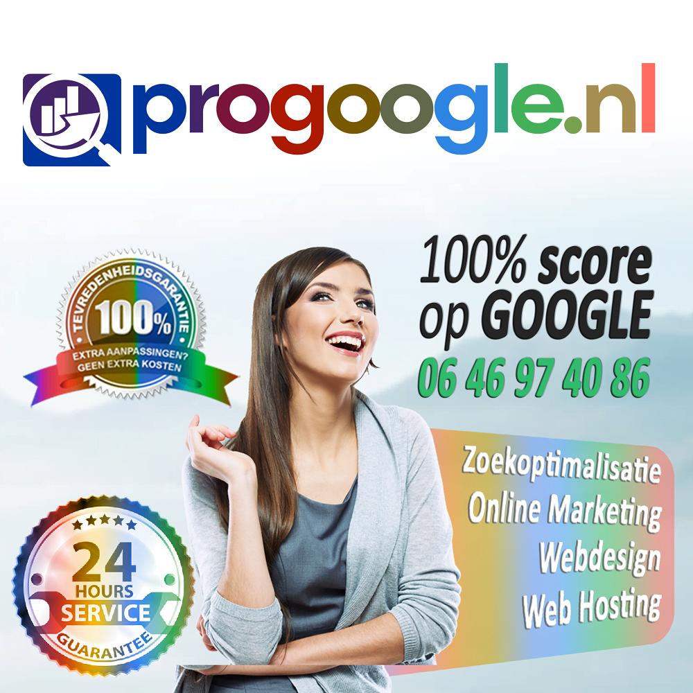 Zoekoptimalisatie & Webdesign | Pro Google Nederland Icon